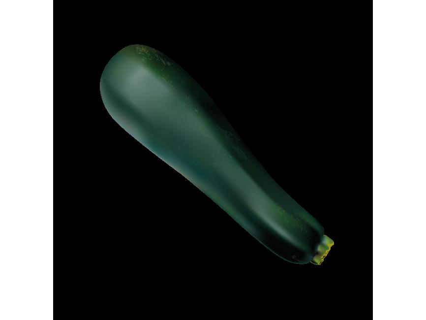 Zucchini PNG Pic