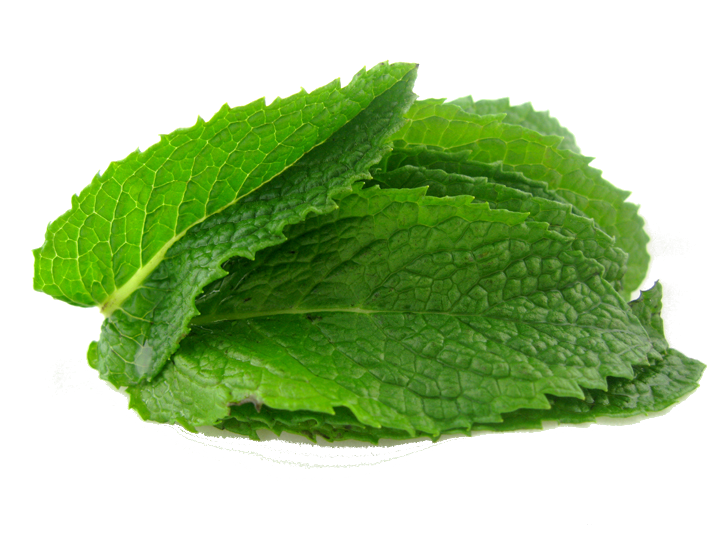 Peppermint PNG Image