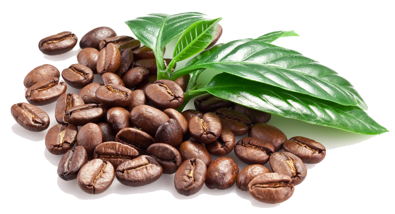 Coffee Beans PNG Transparent Images | PNG All