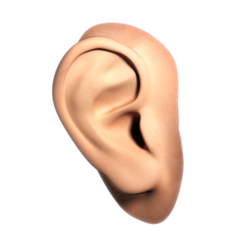 Ear Transparent