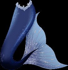 Mermaid Tail PNG