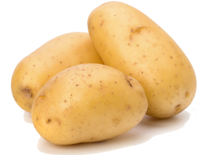 Potato Free Download PNG