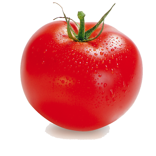 Tomato PNG Clipart