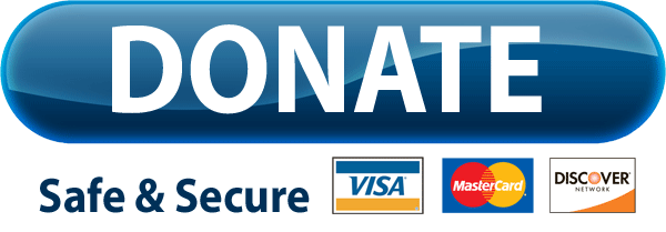 PayPal Donate Button Free Download PNG