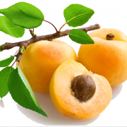 Apricot PNG Picture