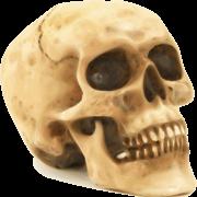 Skull PNG File