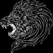 Tiger Tattoos PNG