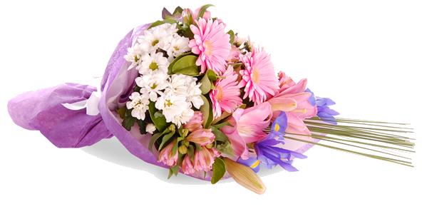 Congratulation Flower PNG Clipart