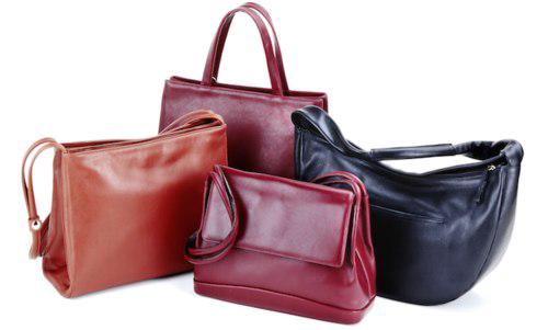 Leather Bag Transparent
