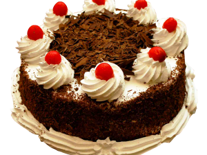 Chocolate Cake PNG Photo