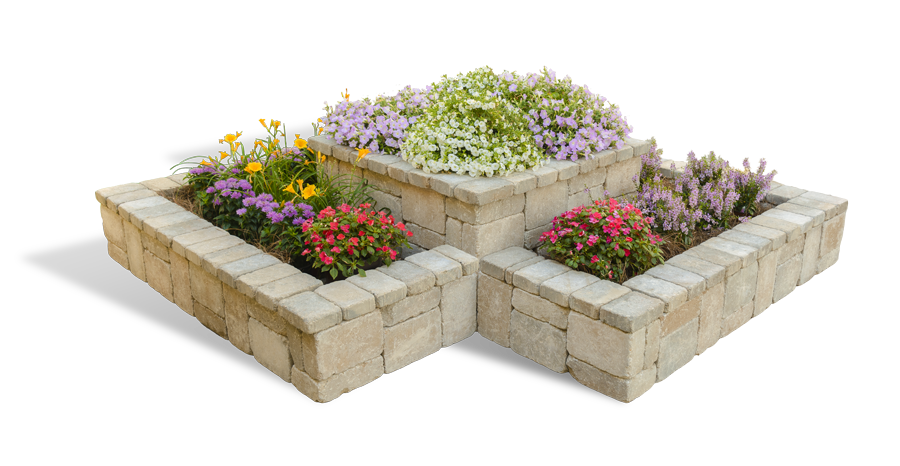 Garden PNG Pic