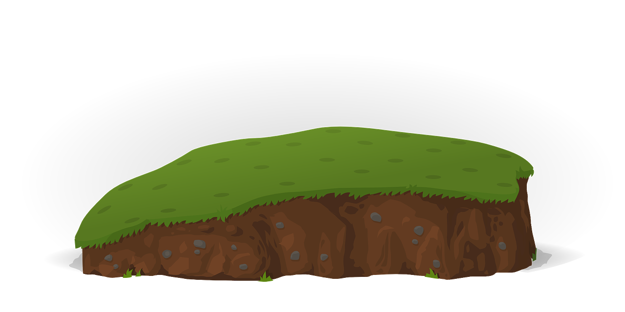 Grass Ground PNG High Quality Image
