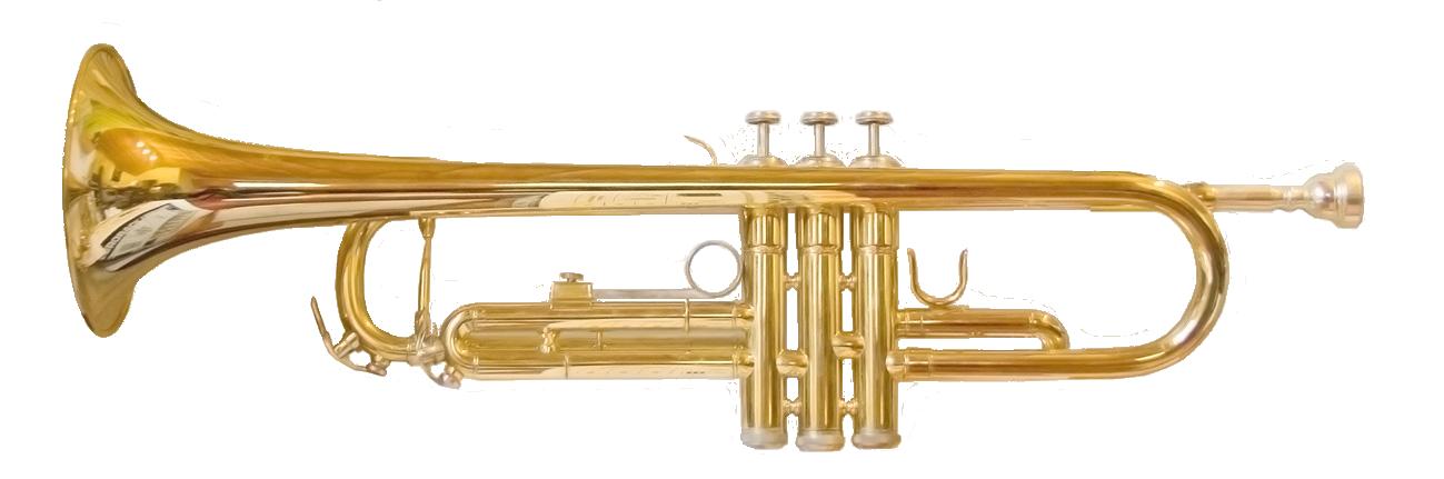 Cornet Musical Instrument