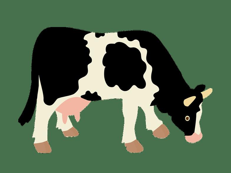 Vector Cattle